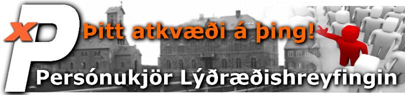 x P - Lýðræðishreyfingin - Hausmynd